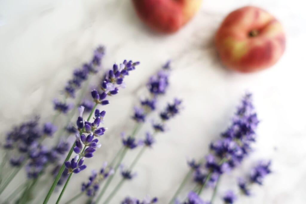 Lavendel und Pfirsiche sind zur Veranschaulichung des Marmeladenrezeptes abgebildet.