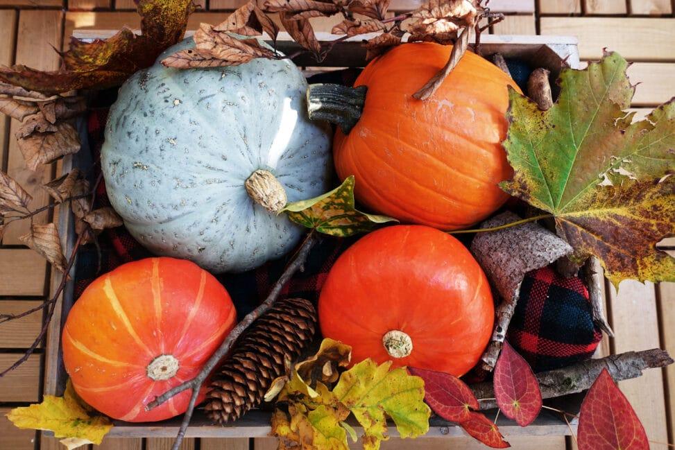 Herbstdeko basteln Kiste von oben