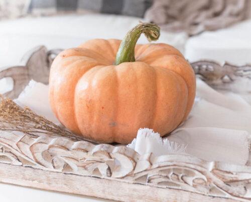 Herbstdekoration kaufen online