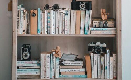 Buchtipps Bücherregal Shop Paradieschen